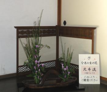 20119dsc01900